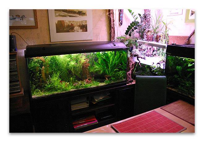 Fiche hagen waterhome 120 for Waterhome aquarium